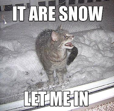 It are snow let me in
